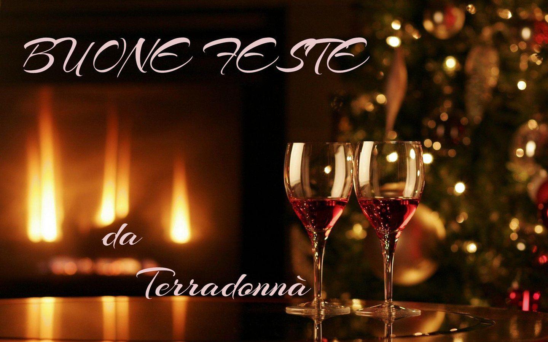 Buone Feste da Terradonnà
